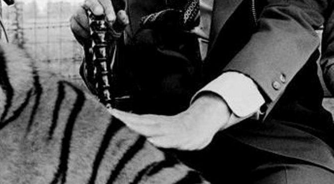 Cuento de J.L. Borges: Tigres Azules