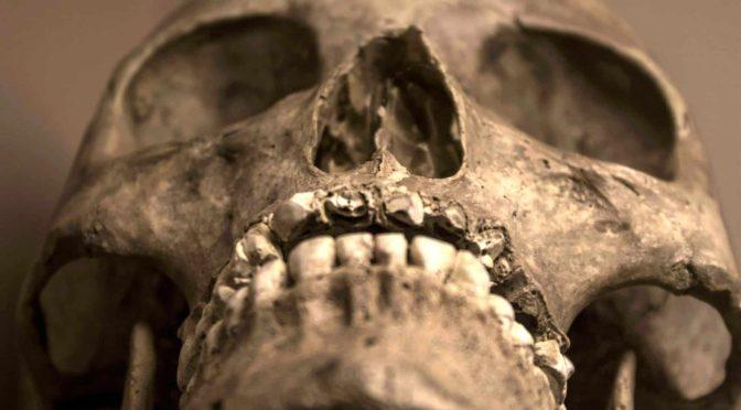 La superficie de la piel: contra el concepto de raza humana