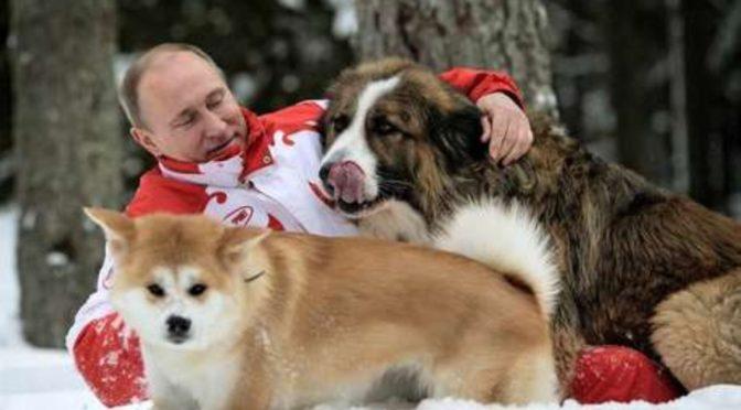 Rusia: la extraña naturaleza del régimen de Putin