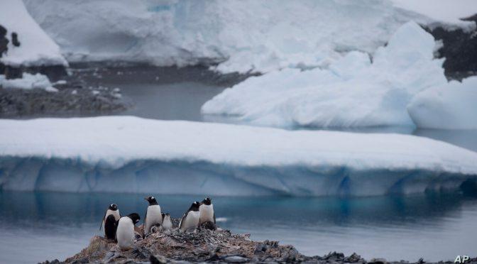 Catastrófico derretimiento de la capa de hielo antártico