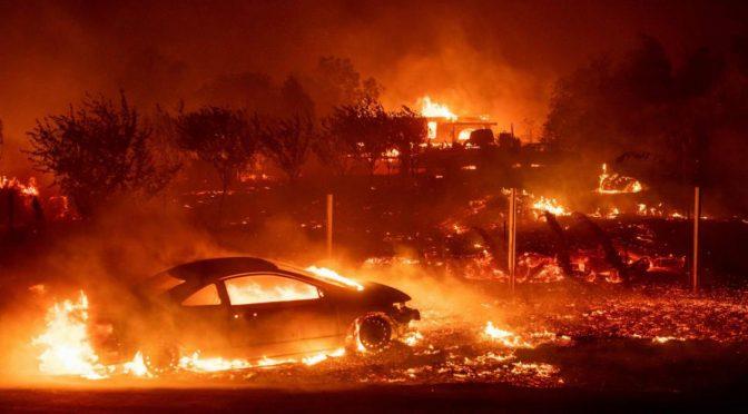EE.UU.: los incendios forestales de California, el cambio climático y el capitalismo