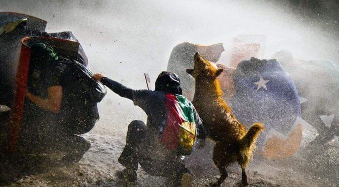La carreta y los bueyes: el proceso constituyente desde la vereda de los trabajadores