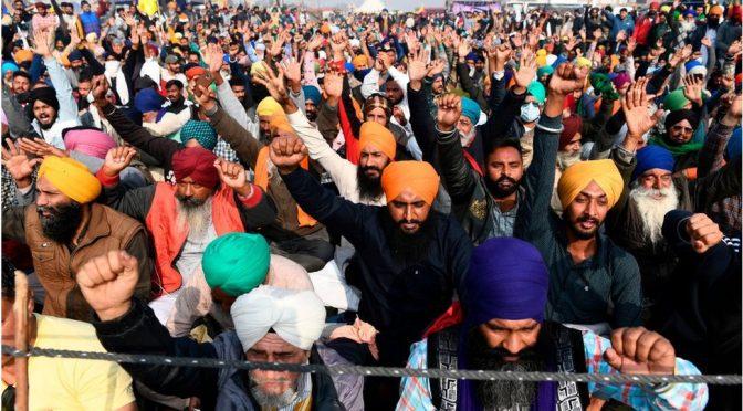 Las protestas campesinas en el contexto global