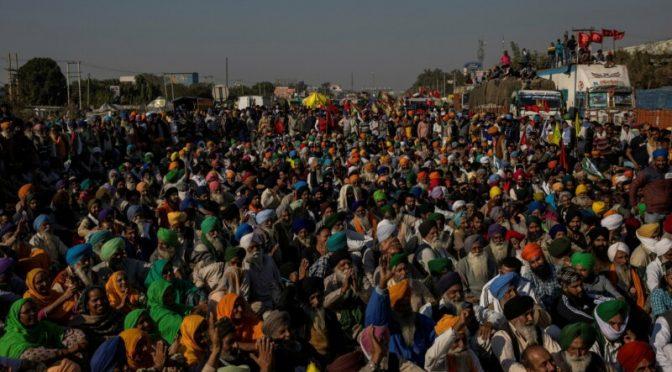 El virus de la desigualdad y la lucha campesina en India